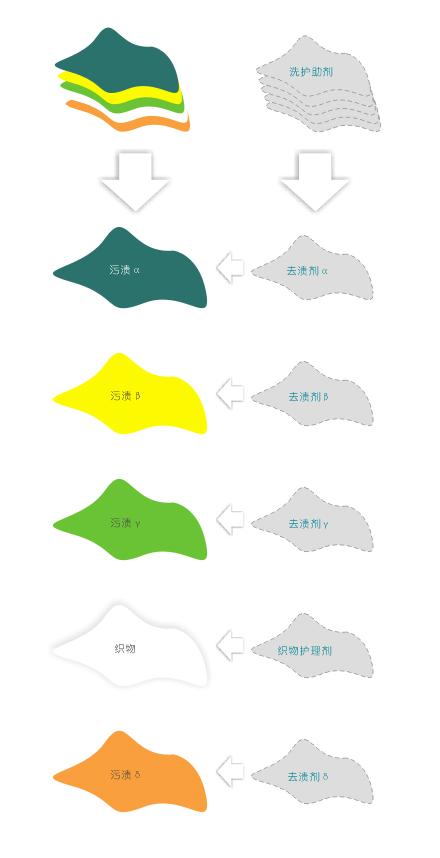 洗护步骤设计图